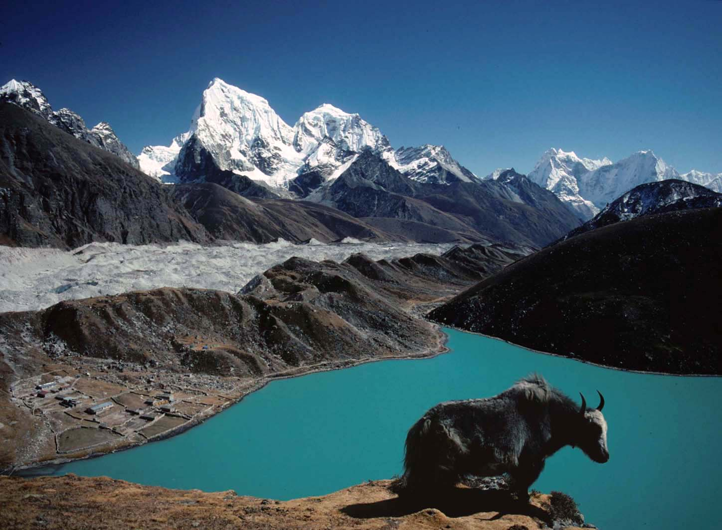 Everest Base Camp & Gokyo Trek
